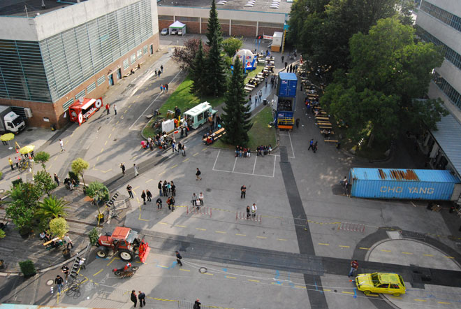 Action Flocking in Linz